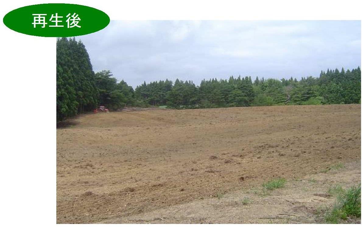 金 緊急 交付 耕作 対策 再生 放棄 利用 地
